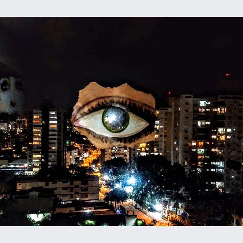 Larissa Scaravaglione - Título: Olhar de dentro